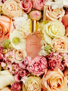 thymes-fragrance-tight